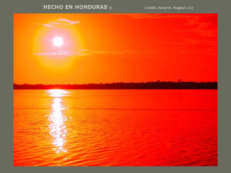 ¨HECHO EN HONDURAS¨ ® ©2005 Peter A. Hughes (1)