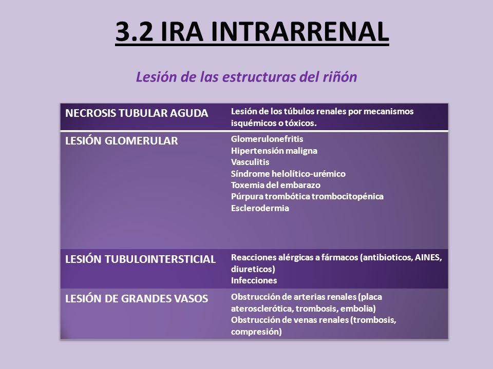3.2 IRA INTRARRENAL Lesión de las estructuras del riñón