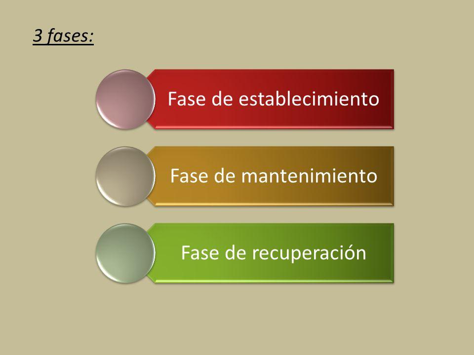 3 fases: Fase de establecimiento Fase de mantenimiento Fase de recuperación