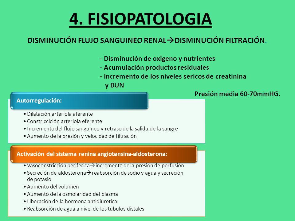 4. FISIOPATOLOGIA DISMINUCIÓN FLUJO SANGUINEO RENAL DISMINUCIÓN FILTRACIÓN. - Disminución de oxigeno y nutrientes - Acumulación productos residuales -