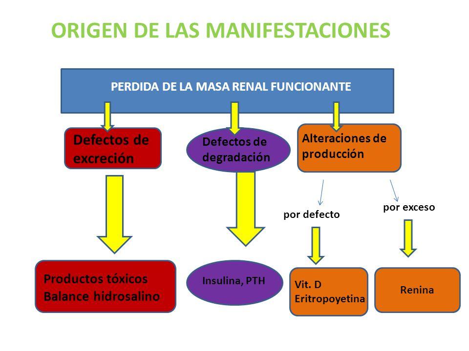 PERDIDA DE LA MASA RENAL FUNCIONANTE ORIGEN DE LAS MANIFESTACIONES Defectos de excreción Defectos de degradación Alteraciones de producción Productos