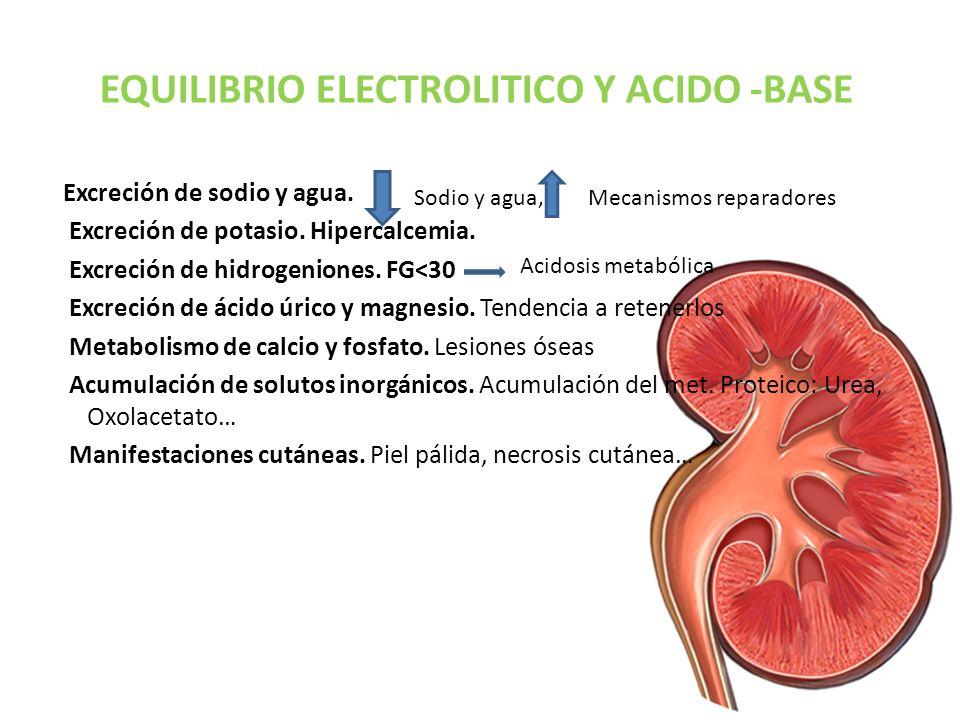 EQUILIBRIO ELECTROLITICO Y ACIDO -BASE Excreción de sodio y agua. Excreción de potasio. Hipercalcemia. Excreción de hidrogeniones. FG˂30 Excreción de