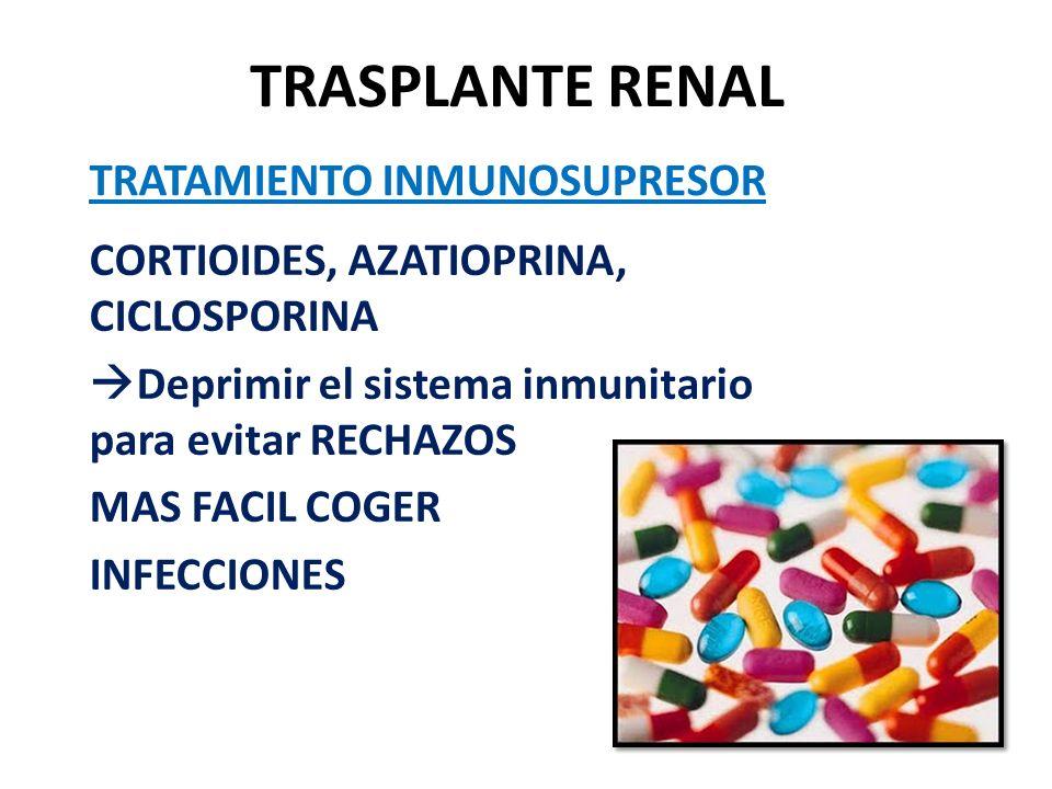 TRASPLANTE RENAL CORTIOIDES, AZATIOPRINA, CICLOSPORINA Deprimir el sistema inmunitario para evitar RECHAZOS MAS FACIL COGER INFECCIONES TRATAMIENTO INMUNOSUPRESOR