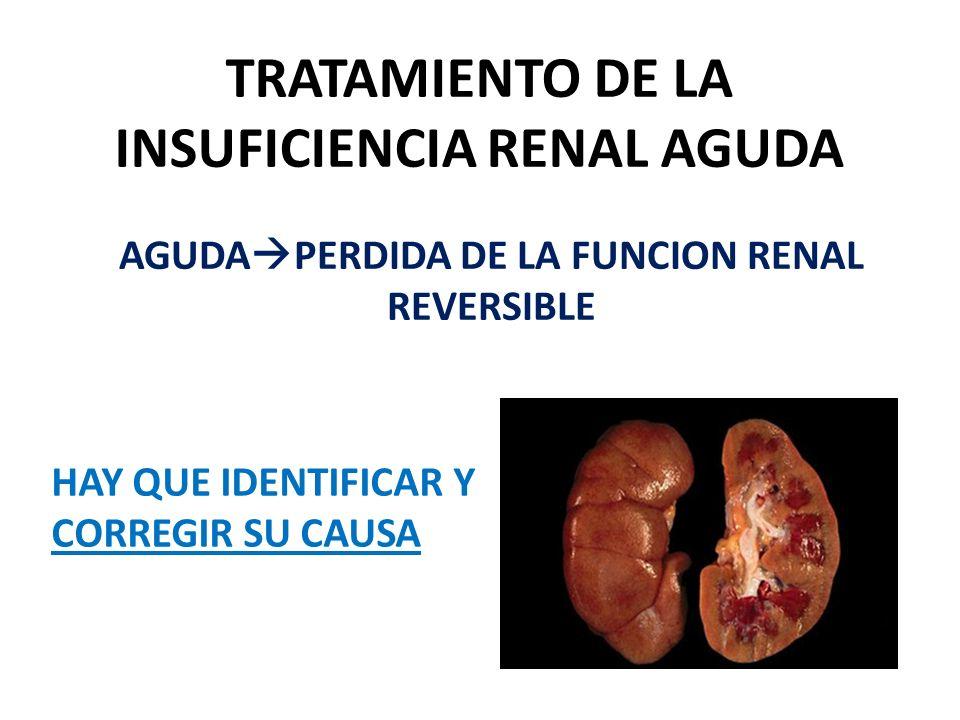 TRATAMIENTO DE LA INSUFICIENCIA RENAL AGUDA AGUDA PERDIDA DE LA FUNCION RENAL REVERSIBLE HAY QUE IDENTIFICAR Y CORREGIR SU CAUSA