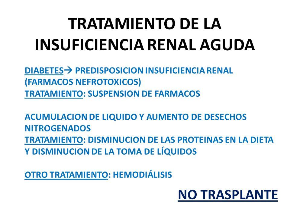 TRATAMIENTO DE LA INSUFICIENCIA RENAL AGUDA DIABETES PREDISPOSICION INSUFICIENCIA RENAL (FARMACOS NEFROTOXICOS) TRATAMIENTO: SUSPENSION DE FARMACOS ACUMULACION DE LIQUIDO Y AUMENTO DE DESECHOS NITROGENADOS TRATAMIENTO: DISMINUCION DE LAS PROTEINAS EN LA DIETA Y DISMINUCION DE LA TOMA DE LÍQUIDOS OTRO TRATAMIENTO: HEMODIÁLISIS NO TRASPLANTE