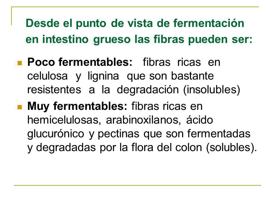 Desde el punto de vista de fermentación en intestino grueso las fibras pueden ser: Poco fermentables: fibras ricas en celulosa y lignina que son basta