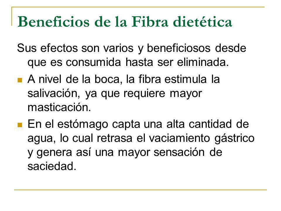Beneficios de la Fibra dietética Sus efectos son varios y beneficiosos desde que es consumida hasta ser eliminada. A nivel de la boca, la fibra estimu