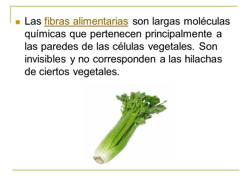 Las fibras alimentarias son largas moléculas químicas que pertenecen principalmente a las paredes de las células vegetales. Son invisibles y no corres