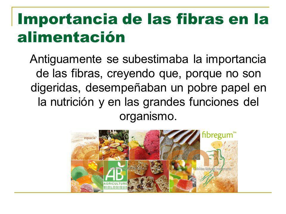 Importancia de las fibras en la alimentación Antiguamente se subestimaba la importancia de las fibras, creyendo que, porque no son digeridas, desempeñ