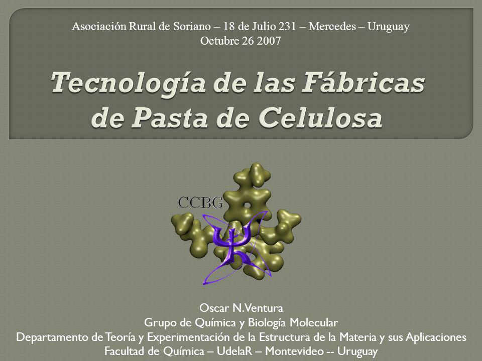 Asociación Rural de Soriano – 18 de Julio 231 – Mercedes – Uruguay Octubre 26 2007 Oscar N. Ventura Grupo de Química y Biología Molecular Departamento
