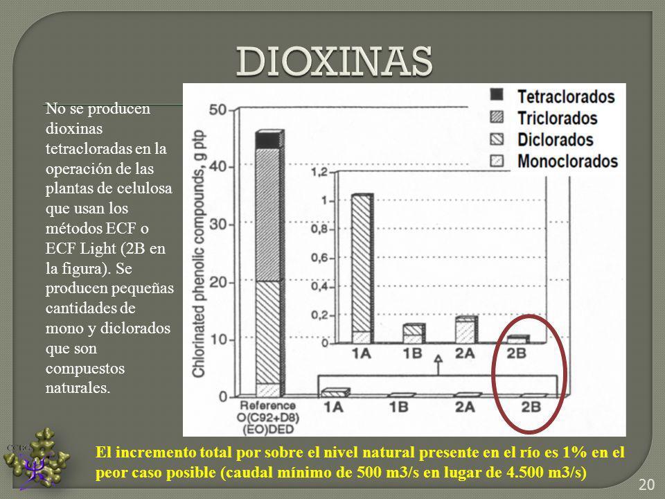 No se producen dioxinas tetracloradas en la operación de las plantas de celulosa que usan los métodos ECF o ECF Light (2B en la figura). Se producen p
