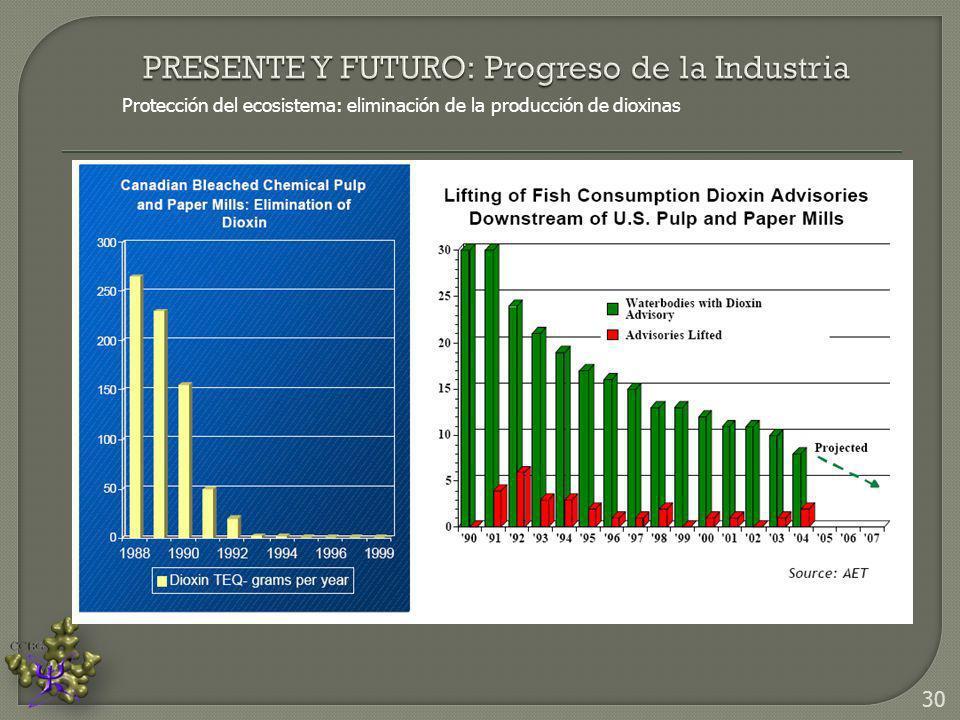 Protección del ecosistema: eliminación de la producción de dioxinas 30