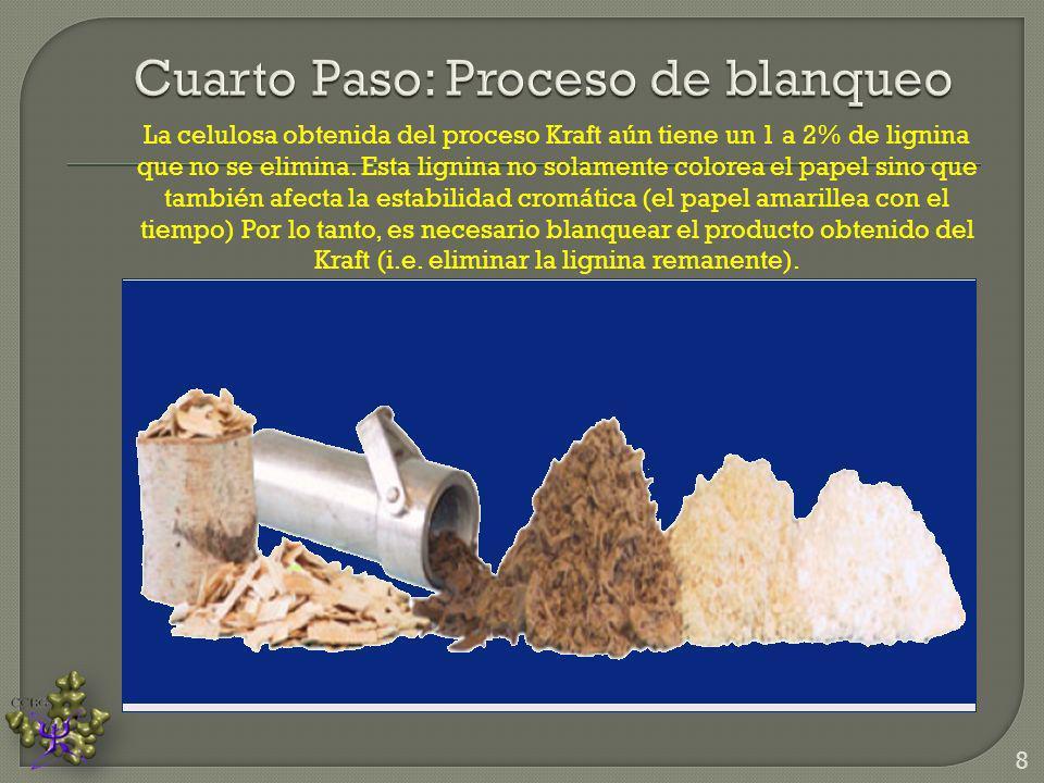 La celulosa obtenida del proceso Kraft aún tiene un 1 a 2% de lignina que no se elimina. Esta lignina no solamente colorea el papel sino que también a