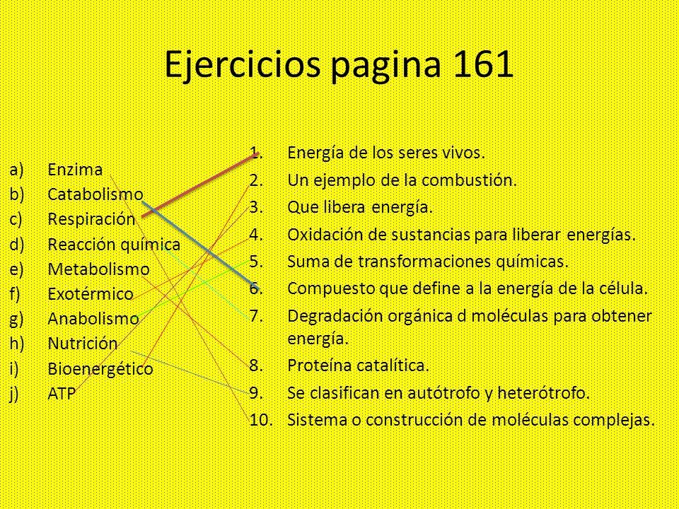 Ejercicios pagina 161 a)Enzima b)Catabolismo c)Respiración d)Reacción química e)Metabolismo f)Exotérmico g)Anabolismo h)Nutrición i)Bioenergético j)AT