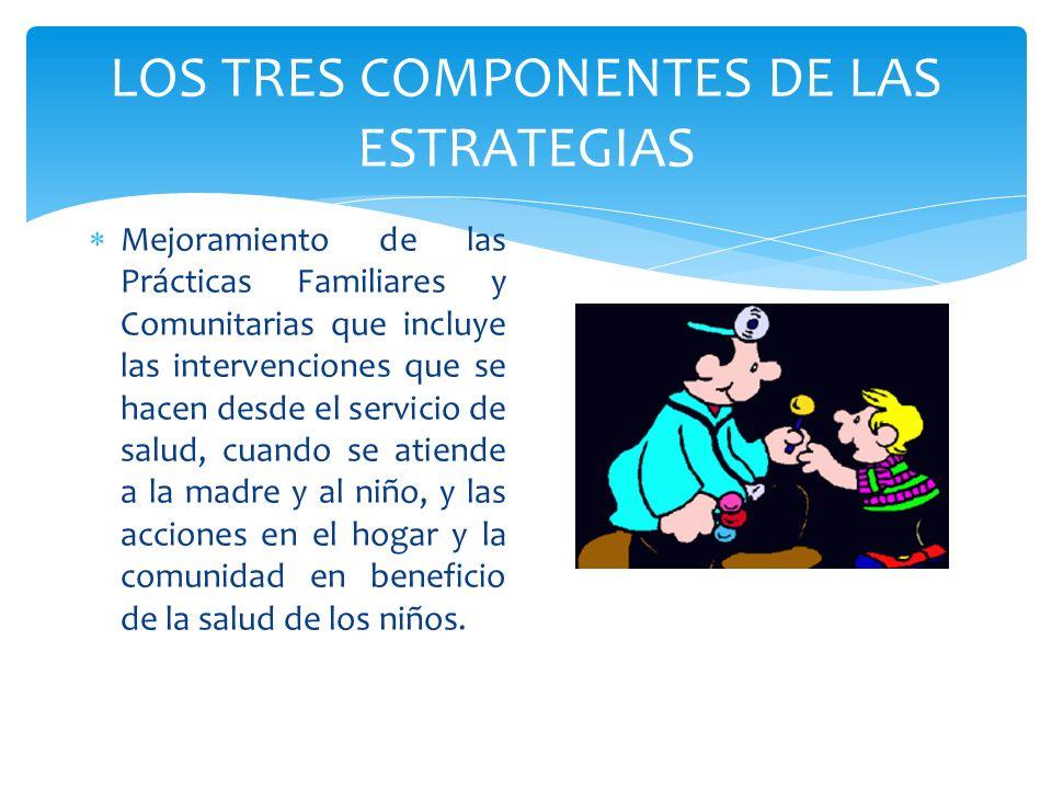 LOS TRES COMPONENTES DE LAS ESTRATEGIAS Mejoramiento de las Prácticas Familiares y Comunitarias que incluye las intervenciones que se hacen desde el s