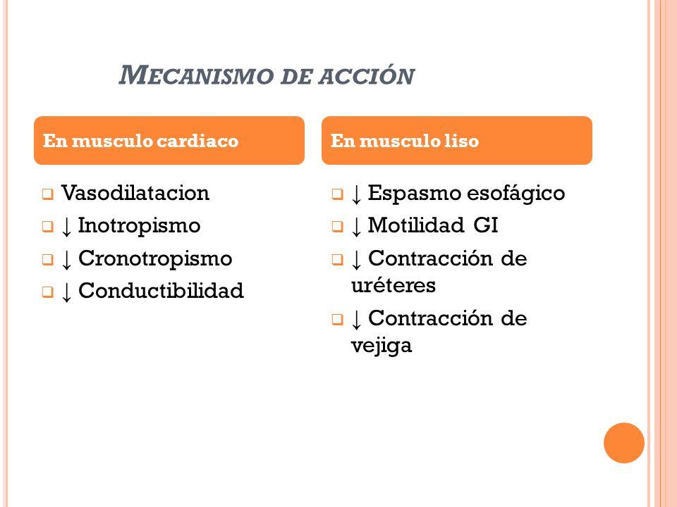 M ECANISMO DE ACCIÓN Vasodilatacion Inotropismo Cronotropismo Conductibilidad Espasmo esofágico Motilidad GI Contracción de uréteres Contracción de ve
