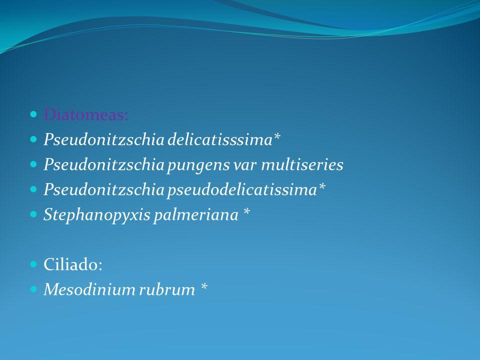 Diatomeas: Pseudonitzschia delicatisssima* Pseudonitzschia pungens var multiseries Pseudonitzschia pseudodelicatissima* Stephanopyxis palmeriana * Ciliado: Mesodinium rubrum *