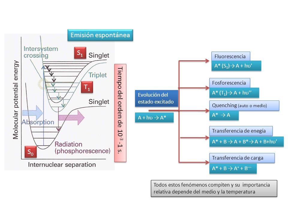 S0S0 S0S0 S1S1 S1S1 T1T1 T1T1 Tiempo del orden de 10 -3 -1 s. Emisión espontánea Evolución del estado excitado Fluorescencia Fosforescencia Quenching