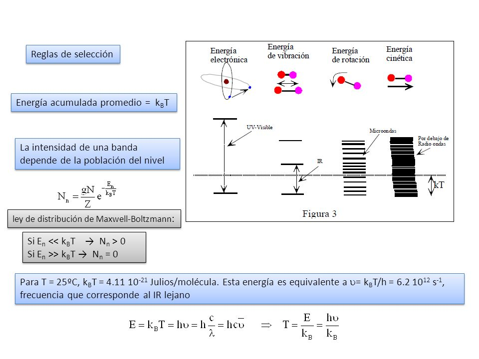 Reglas de selección Energía acumulada promedio = k B T La intensidad de una banda depende de la población del nivel ley de distribución de Maxwell-Bol