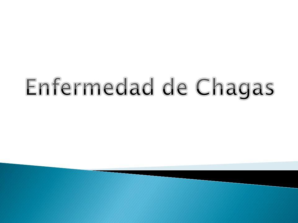 La enfermedad de Chagas es causada por un parásito.