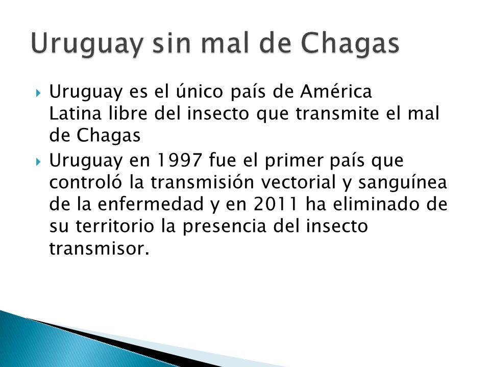 Uruguay es el único país de América Latina libre del insecto que transmite el mal de Chagas Uruguay en 1997 fue el primer país que controló la transmi