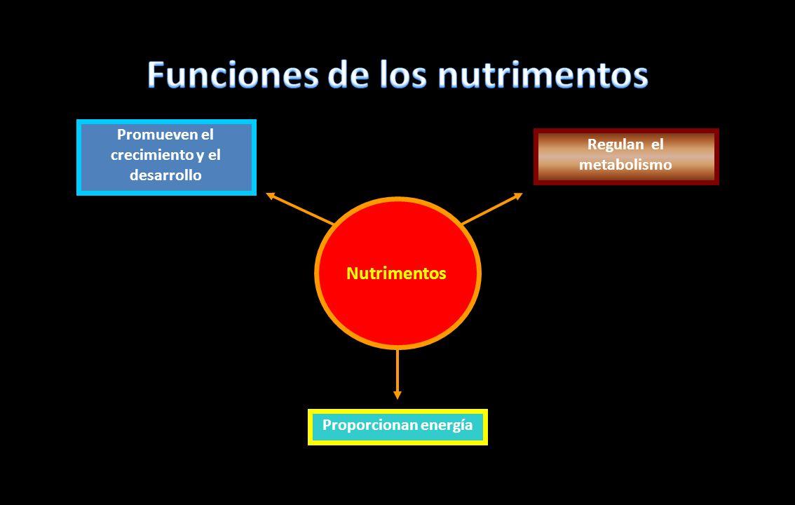 Norma Oficial Mexicana NOM-043-SSA2-2005, Servicios Básicos de Salud.