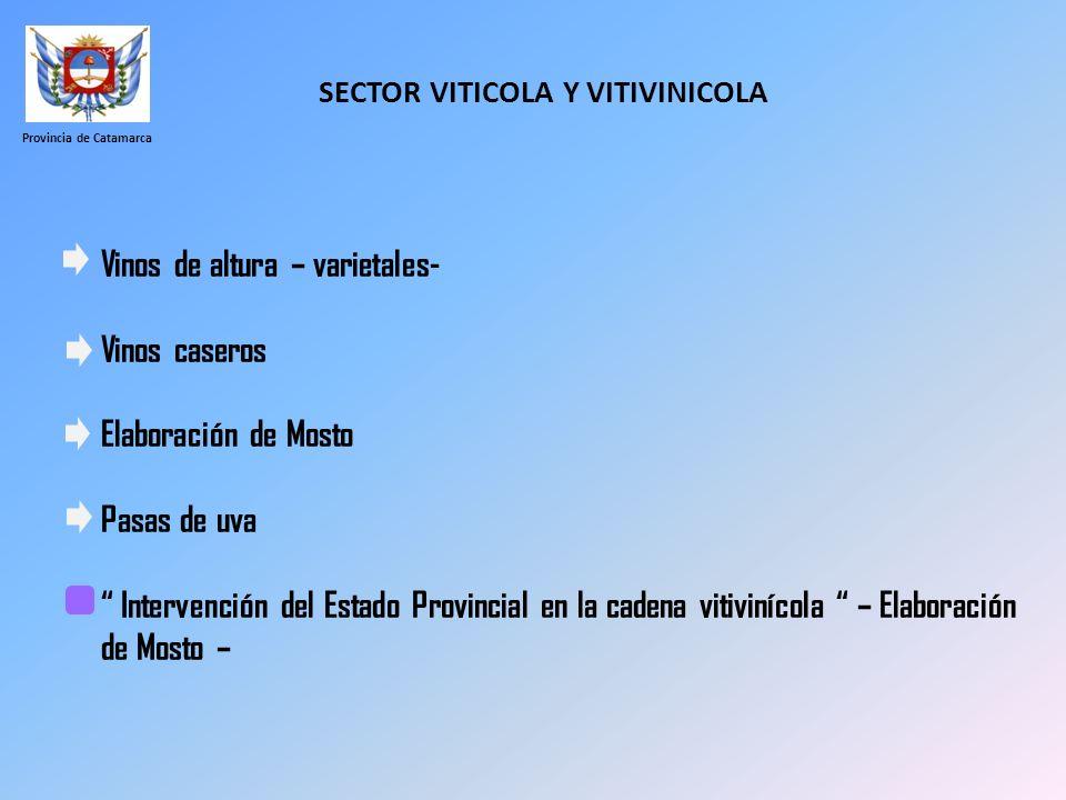 SECTOR VITICOLA Y VITIVINICOLA Provincia de Catamarca Vinos de altura – varietales- Vinos caseros Elaboración de Mosto Pasas de uva Intervención del E