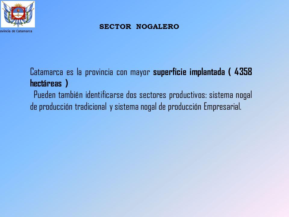 Provincia de Catamarca SECTOR NOGALERO Catamarca es la provincia con mayor superficie implantada ( 4358 hectáreas ) Pueden también identificarse dos s
