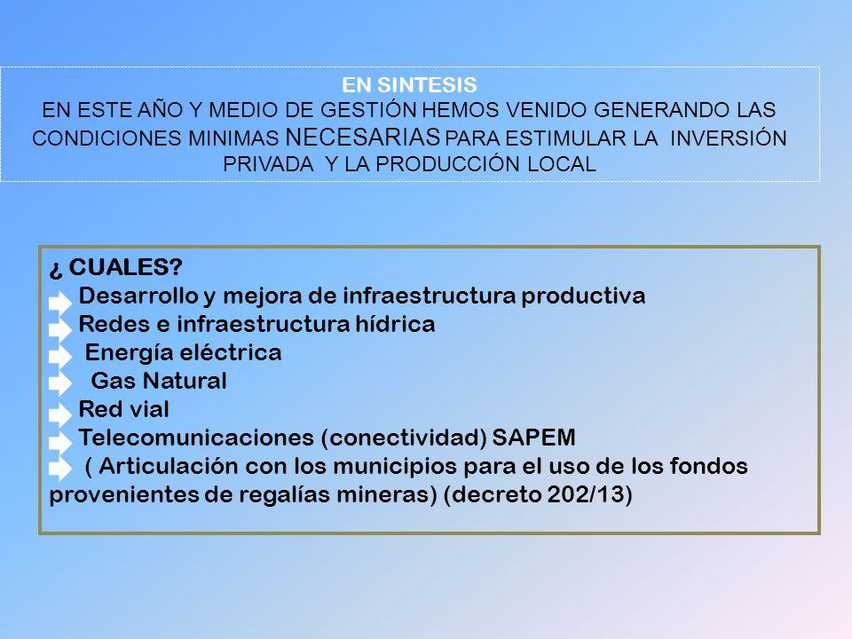¿ CUALES? Desarrollo y mejora de infraestructura productiva Redes e infraestructura hídrica Energía eléctrica Gas Natural Red vial Telecomunicaciones