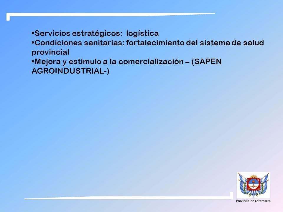 Servicios estratégicos: logística Condiciones sanitarias: fortalecimiento del sistema de salud provincial Mejora y estimulo a la comercialización – (S