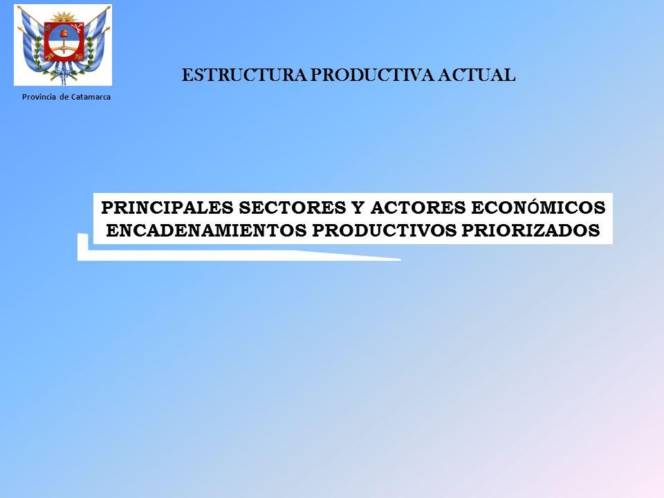 ESTRUCTURA PRODUCTIVA ACTUAL PRINCIPALES SECTORES Y ACTORES ECON Ó MICOS ENCADENAMIENTOS PRODUCTIVOS PRIORIZADOS Provincia de Catamarca
