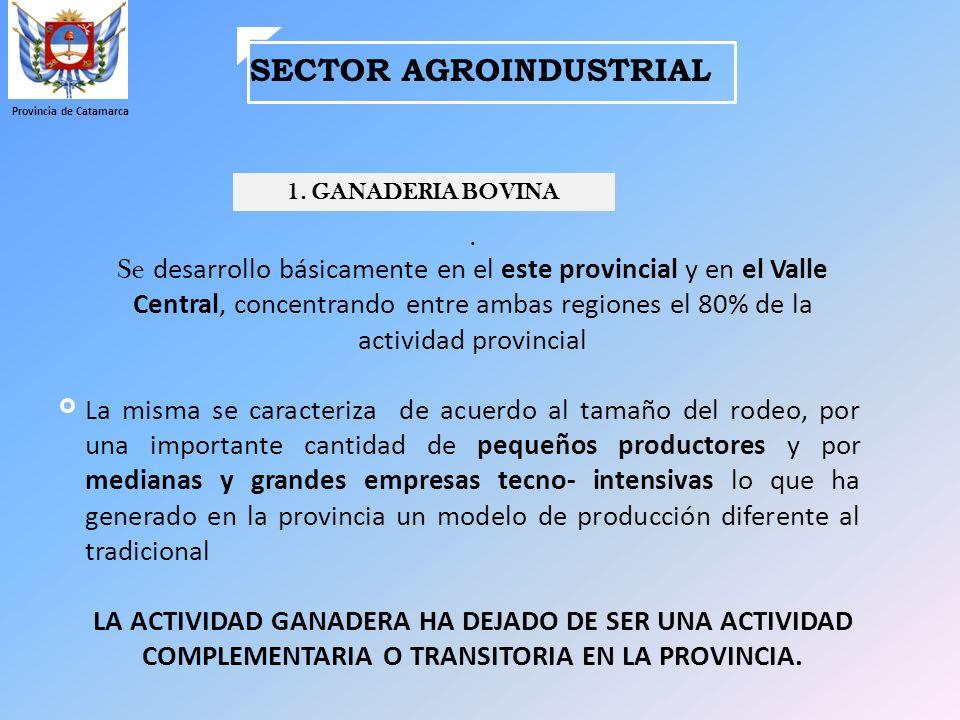 SECTOR AGROINDUSTRIAL Provincia de Catamarca 1. GANADERIA BOVINA. Se desarrollo básicamente en el este provincial y en el Valle Central, concentrando