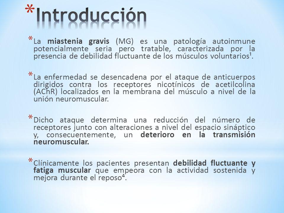 * El diagnóstico se basa en los hallazgos clínicos y se apoya en el resultado de la búsqueda de anticuerpos contra los receptores de acetilcolina (ACRA), estudios neurofisiológicos y respuesta farmacológica².