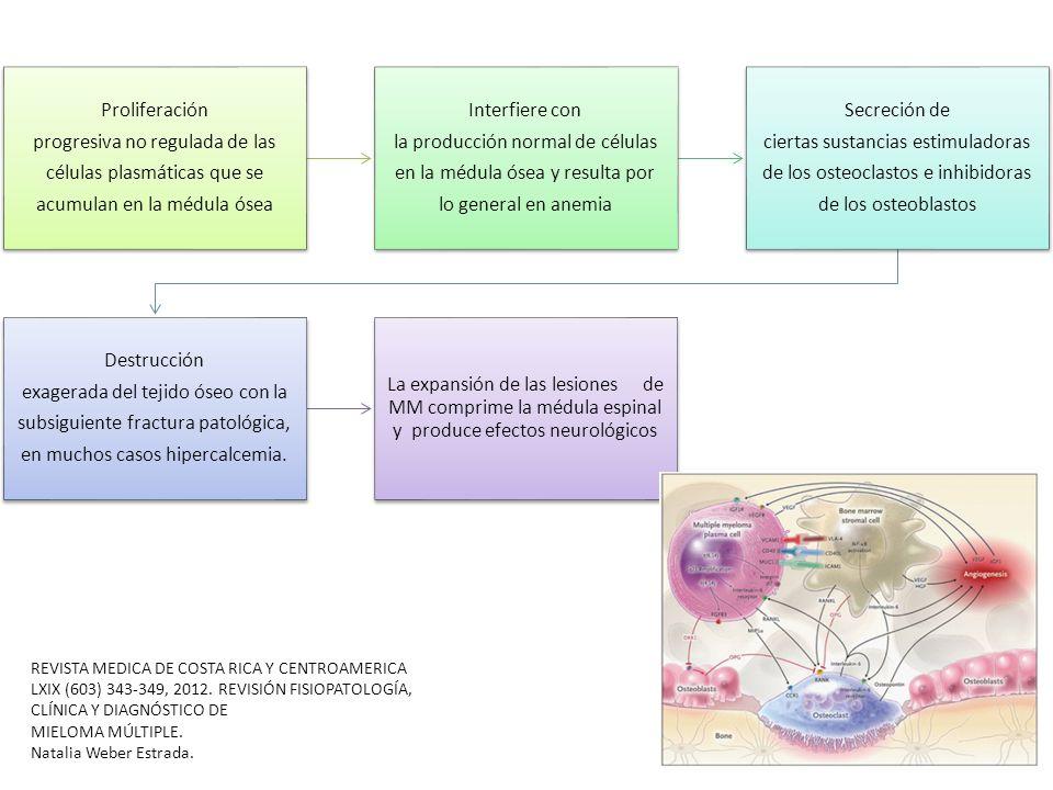 Proliferación progresiva no regulada de las células plasmáticas que se acumulan en la médula ósea Interfiere con la producción normal de células en la