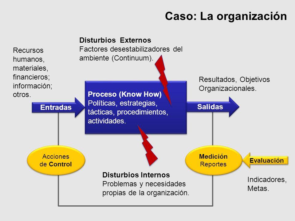 Caso: La organización Resultados, Objetivos Organizacionales. Recursos humanos, materiales, financieros; información; otros. Disturbios Externos Facto
