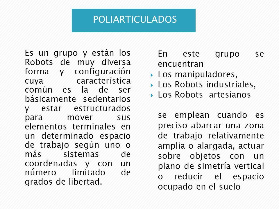 POLIARTICULADOS Es un grupo y están los Robots de muy diversa forma y configuración cuya característica común es la de ser básicamente sedentarios y e
