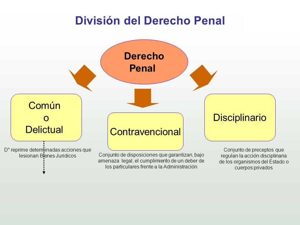 División del Derecho Penal Derecho Penal Común o Delictual Contravencional Disciplinario D° reprime determinadas acciones que lesionan Bienes Juridico