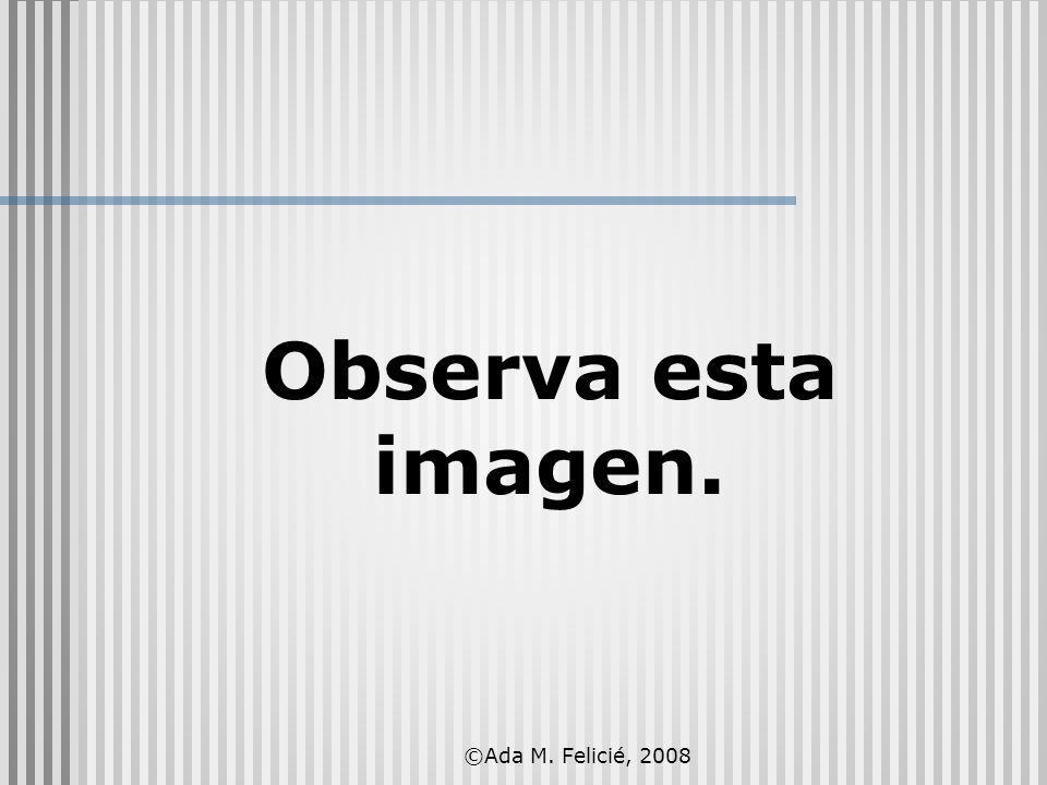 ©Ada M. Felicié, 2008 Observa esta imagen.