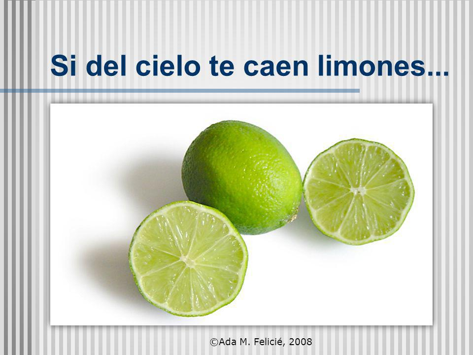 Si del cielo te caen limones... ©Ada M. Felicié, 2008