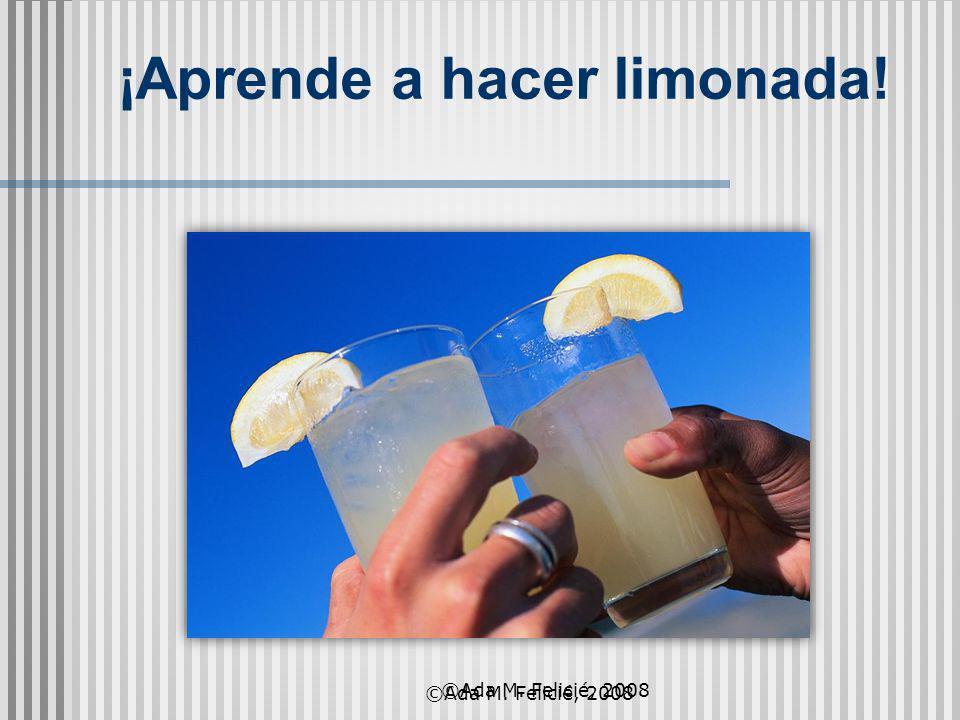 ¡Aprende a hacer limonada! ©Ada M. Felicié, 2008