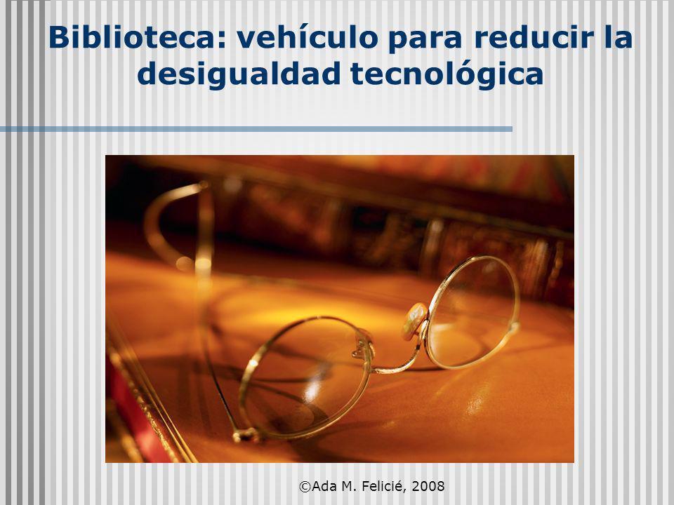 Biblioteca: vehículo para reducir la desigualdad tecnológica ©Ada M. Felicié, 2008