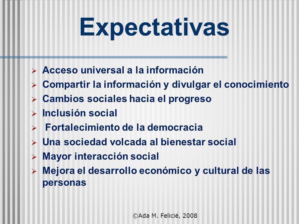 Expectativas Acceso universal a la información Compartir la información y divulgar el conocimiento Cambios sociales hacia el progreso Inclusión social
