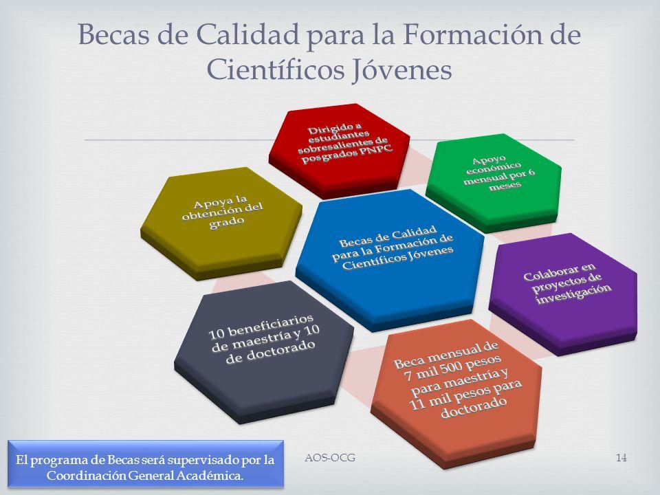 El programa de Becas será supervisado por la Coordinación General Académica. Becas de Calidad para la Formación de Científicos Jóvenes AOS-OCG14