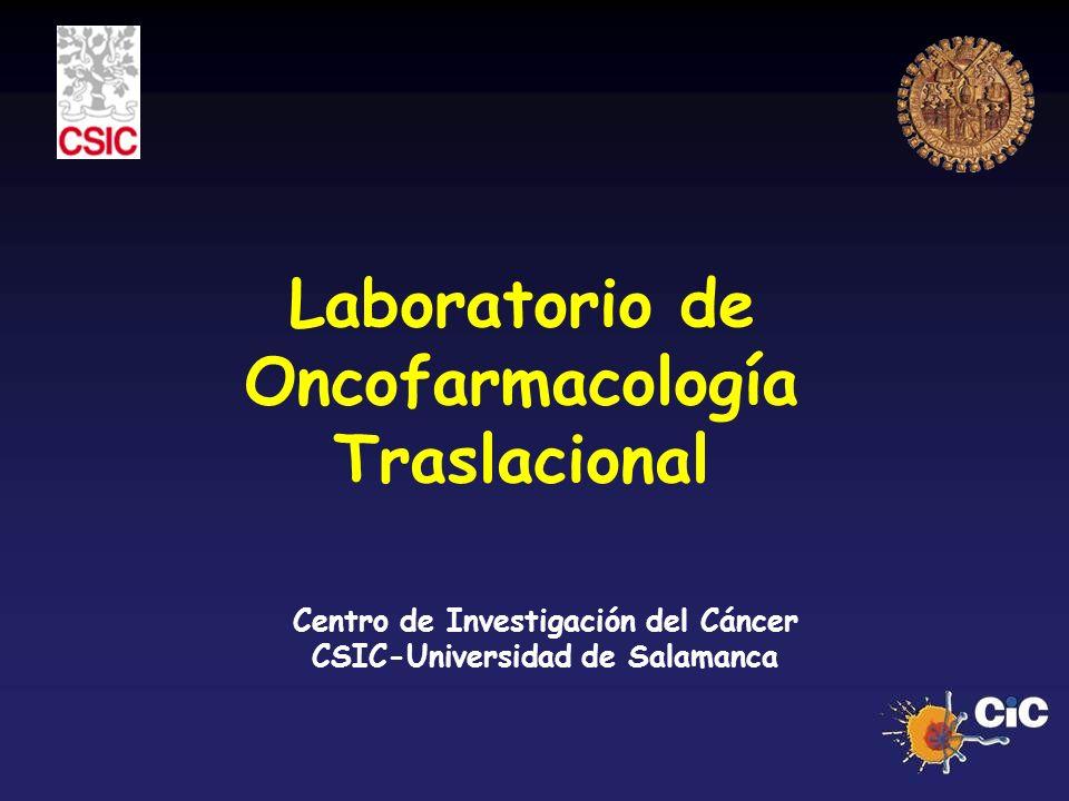 Laboratorio de Oncofarmacología Traslacional Centro de Investigación del Cáncer CSIC-Universidad de Salamanca