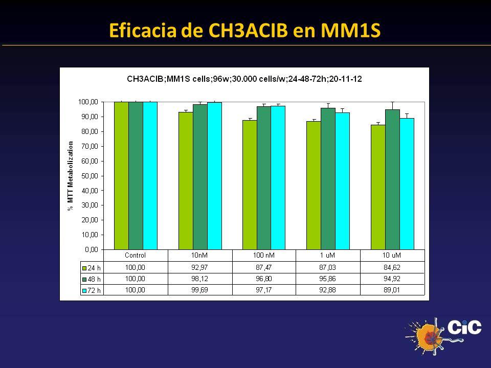83% Eficacia de CH3ACIB en MM1S 24.38 % Anexina + 23.14 % Anexina +