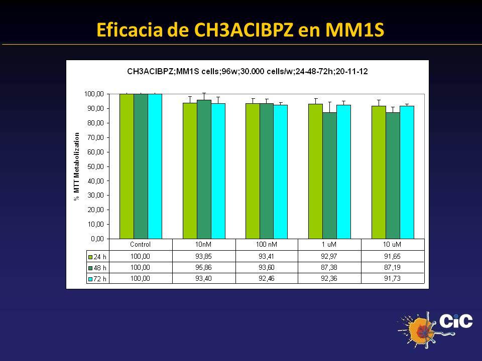 83% Eficacia de CH3ACIBPZ en MM1S 24.38 % Anexina + 23.14 % Anexina +