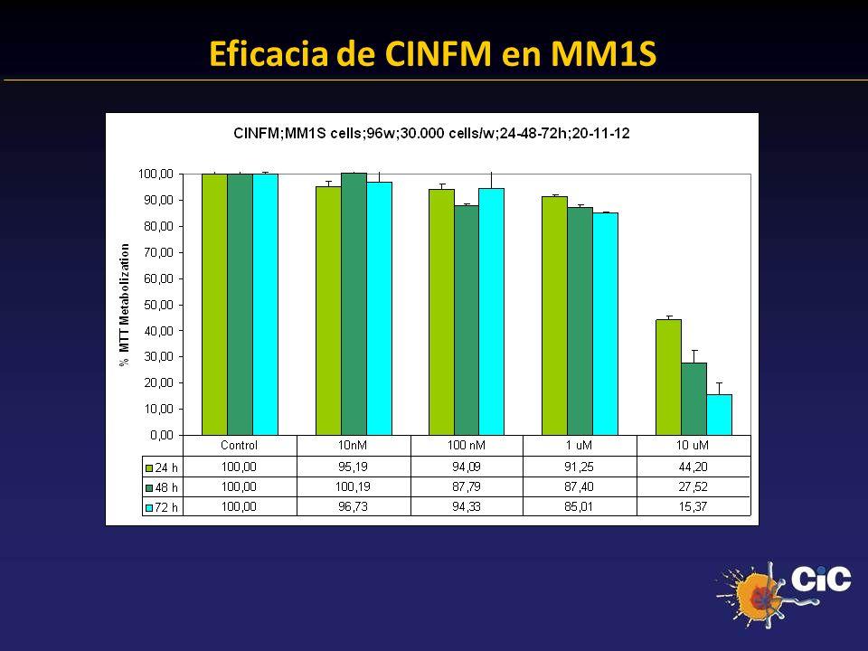 83% Eficacia de CINFM en MM1S 24.38 % Anexina + 23.14 % Anexina +