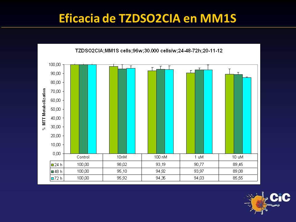 83% Eficacia de TZDSO2CIA en MM1S 24.38 % Anexina + 23.14 % Anexina +