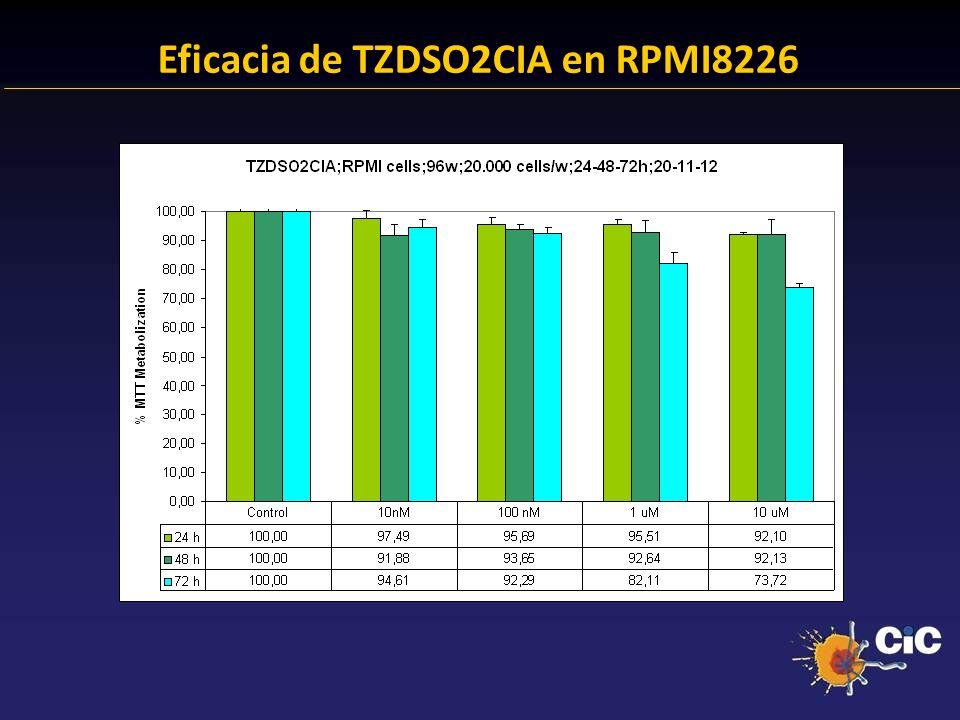 83% Eficacia de TZDSO2CIA en RPMI8226 24.38 % Anexina + 23.14 % Anexina +