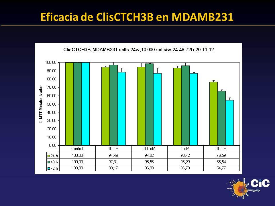83% Eficacia de ClisCTCH3B en MDAMB231 24.38 % Anexina + 23.14 % Anexina +